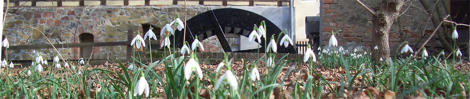 Frühling-2012.jpg